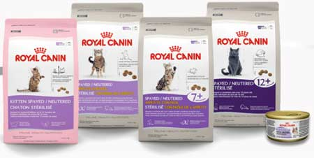 royal-canin แมวท้องผูก ไฟเบอร์สูง