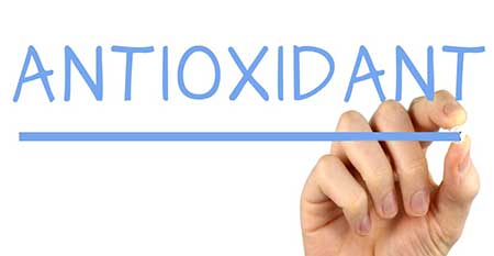 antioxidant-เซซามินเป็นตัวช่วยต้านอนุมูลอิสระ