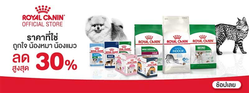 royal-canin-อาหารแมวยี่ห้อไหนดี