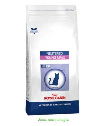 royal-canin-young-male